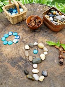 Stumps and Stones; photo credit Heidi Duren